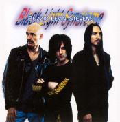 Black Light Syndrome by BOZZIO LEVIN STEVENS album cover