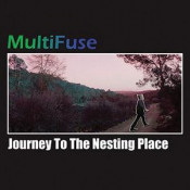 Journey To The Nesting Place by MULTIFUSE album cover