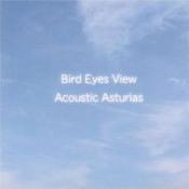 Bird Eyes View by ASTURIAS album cover