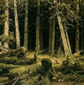 Der Ort by KLABAUTAMANN album cover