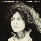 A Beard of Stars by TYRANNOSAURUS REX (NOT T. REX) album cover
