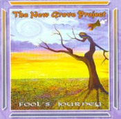 Fool's Journey  by NEW GROVE PROJECT, THE album cover