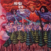 Ekranoplan by ASSEMBLE HEAD IN SUNBURST SOUND album cover