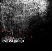 NeWBReeD by NEWBREED album cover
