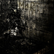 MoRT by BLUT AUS NORD album cover