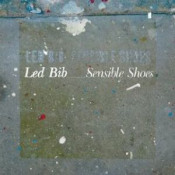 Sensible Shoes by LED BIB album cover