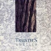 Growing Smaller by TRUSTIES album cover