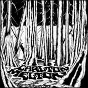 Pass It On by CARLTON MELTON album cover