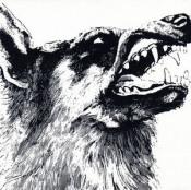 I, Vigilante by CRIPPLED BLACK PHOENIX album cover