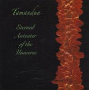 Eternal Anteater of the Universe by TAMANDUA album cover