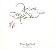 Astaroth: Book Of Angels Volume 1 (Jamie Saft Trio) by MASADA album cover