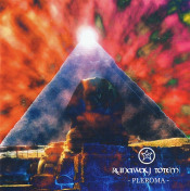 Pleroma  by RUNAWAY TOTEM album cover
