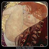 2009 USA Touredition by SAMSARA BLUES EXPERIMENT album cover