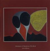 Adventures Of Mandorius (The Bird) by TALE OF DIFFUSION album cover