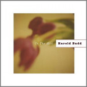 In the Mist by BUDD, HAROLD album cover