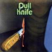 Electric Indian by DULL KNIFE album cover