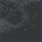 Precious Precious Silver Gold by HOW COMES THE CONSTELLATIONS SHINE album cover