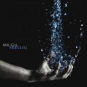Skellig by MR. GIL album cover