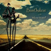 Whose Dream? by BUNCHAKEZE album cover