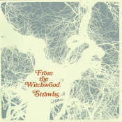 From The Witchwood by STRAWBS album cover