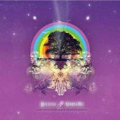 Voievozii by BUCIUM album cover