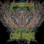 Cold Night by PHROZENLIGHT album cover