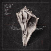 Lullaby and... The Ceaseless Roar by PLANT, ROBERT album cover