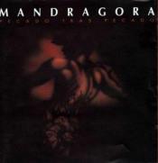 Pecado Tras Pecado by MANDRAGORA album cover