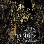 The Descent by MANTRIC album cover