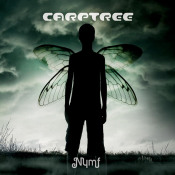 Nymf by CARPTREE album cover