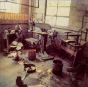 Whalefeathers by WHALEFEATHERS album cover
