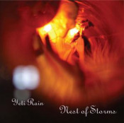 Nest of Storms by YETI RAIN album cover
