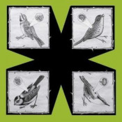 Birds by NORTH SEA RADIO ORCHESTRA album cover