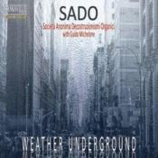 Weather Underground (w/ Guido Michelone and Franz Krauspenhaar) by SOCIETÀ ANONIMA DECOSTRUZIONISMI ORGANICI, THE album cover