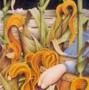 Orbital by PIG FARM ON THE MOON album cover