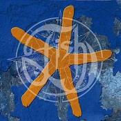 Thirteenth Star by FISH album cover