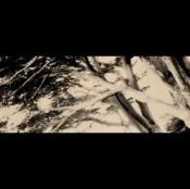 The Park by ROVERSI, CRISTIANO album cover