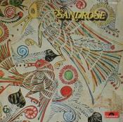 Sandrose by SANDROSE album cover