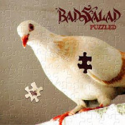 Puzzled by BAD SALAD album cover