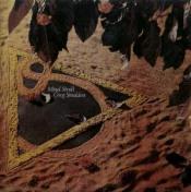 Mind Stroll by SNEDDON, GREG album cover
