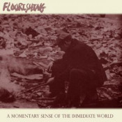 A Momentary Sense of the Immediate World by FLOURISHING album cover
