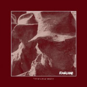 The Sum of All Fossils by FLOURISHING album cover