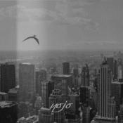 Yojo by YOJO album cover
