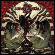 The Levitation Hex by LEVITATION HEX, THE album cover