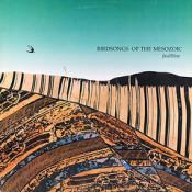 Faultline by BIRDSONGS OF THE MESOZOIC album cover