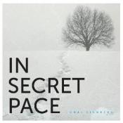 In Secret Pace by JONAS LINDBERG   album cover