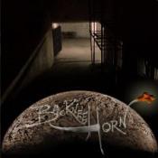 Backnee Horn by BACKNEE HORN album cover