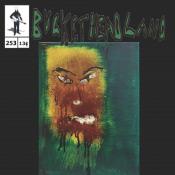 Pik3 253 - Coop Erstown by BUCKETHEAD album cover