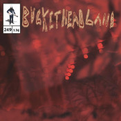 Pike 249 - The Moss Lands by BUCKETHEAD album cover