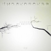 At The Height Of The Trees by CIOLKOWSKA album cover